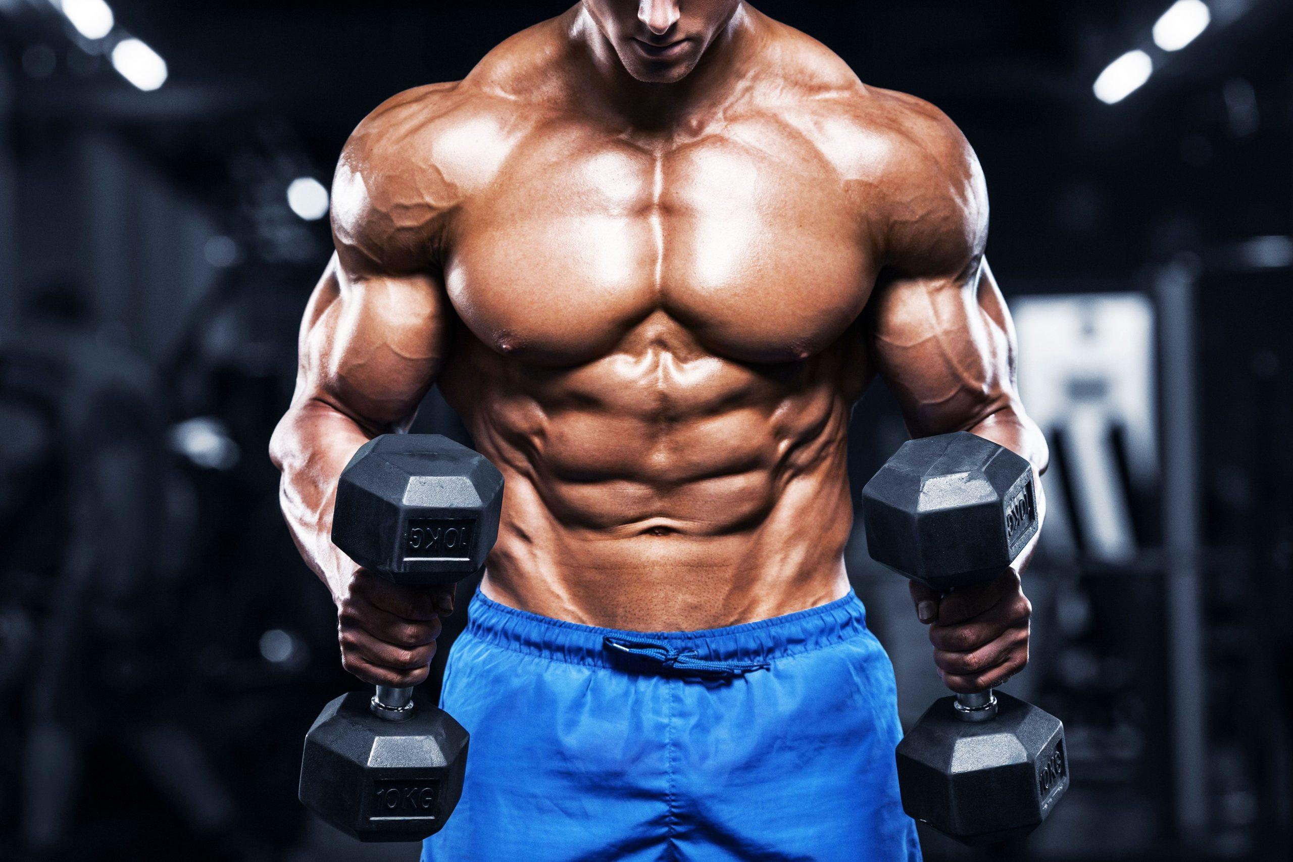 بناء العضلات للرجال