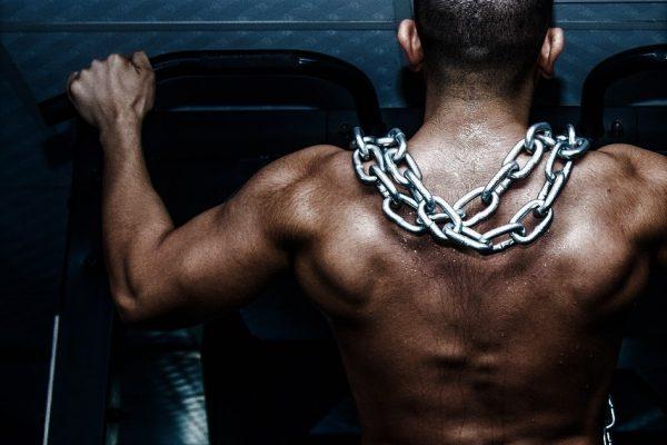بناء العضلات وحرق الدهون